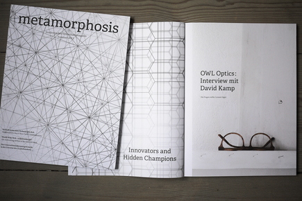 Owl Metamorphosis 2012 1